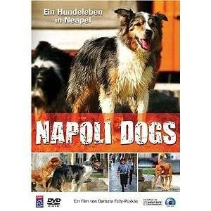 "DOCU FICTION ""I CANI DI NAPOLI"""